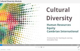 Developing Education Around Cultural Diversity